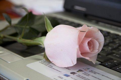 8 марта, роза и ноутбук